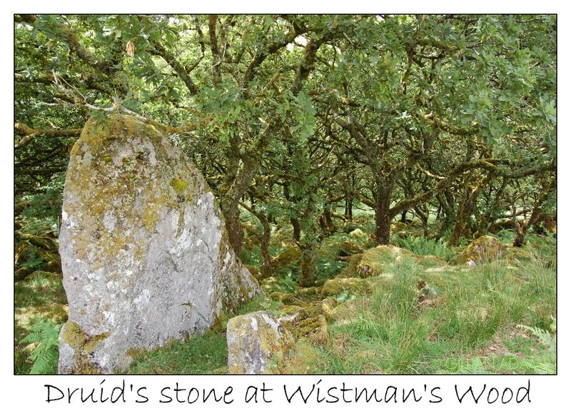 2 druids stone