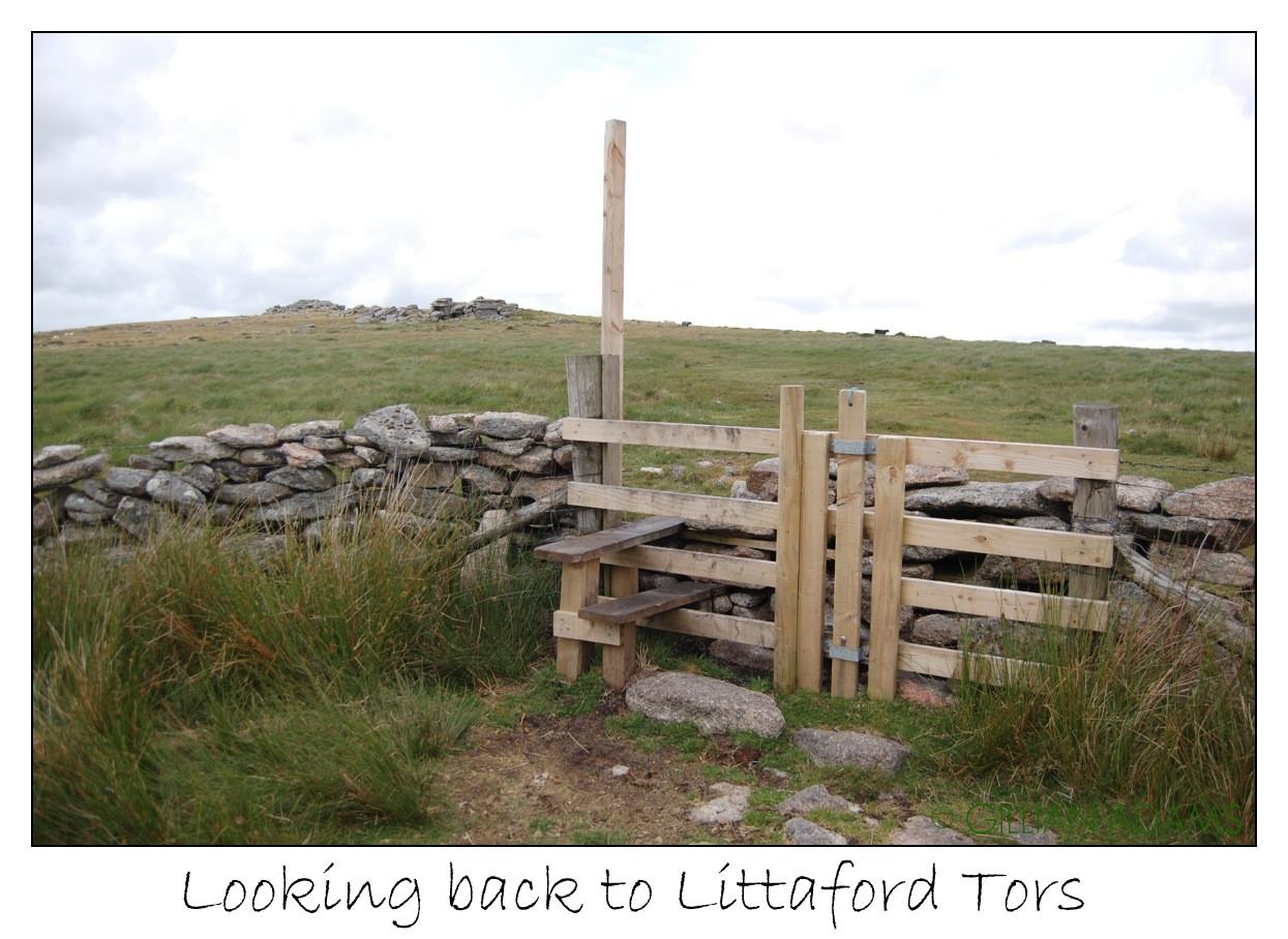 Divine Dartmoor Walks - MID DARTMOOR: Wistman's Wood and