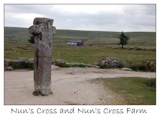 6 cross farm