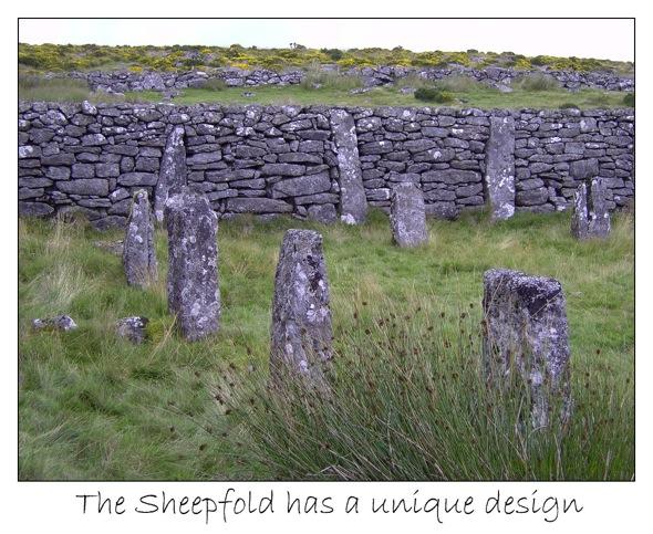 3 sheepfold