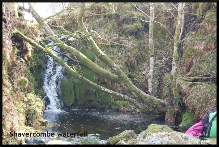 6 shavercombe waterfall