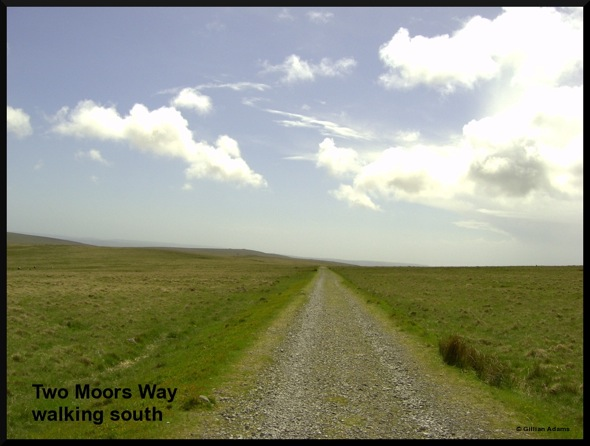5 two moors way