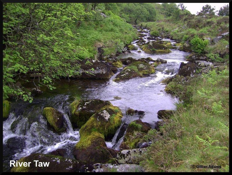 6 river taw