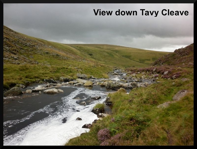 Tavy cleave 2