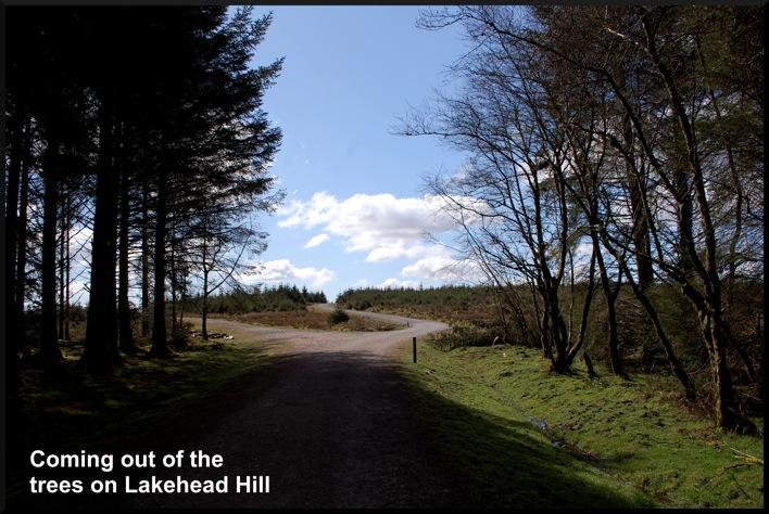 1 bellever path