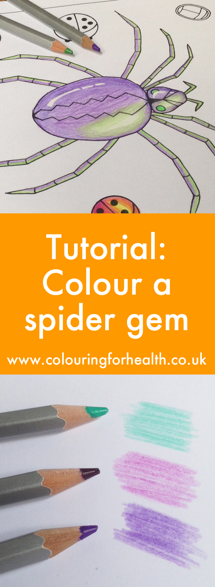 Colouring a spider gemstone Gillian Adams