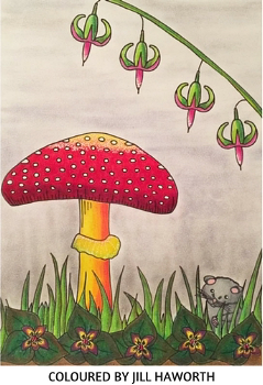 Drawn to the Enchanted Garden colouring book for adults