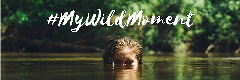 Find your wild moment