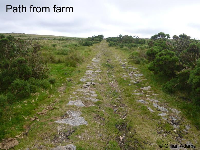 2 farm path