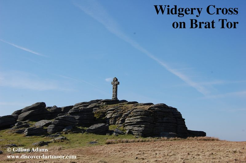 1 widgery crossUSE