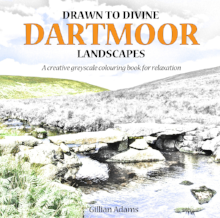 Drawn to Divine Dartmoor Landscapes adult colouring book