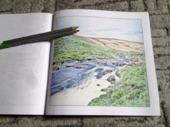 Tavy cleave, Drawn to Divine Dartmoor Landscapes colouring book