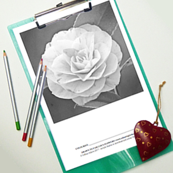 Free colouring page, fabulous flower