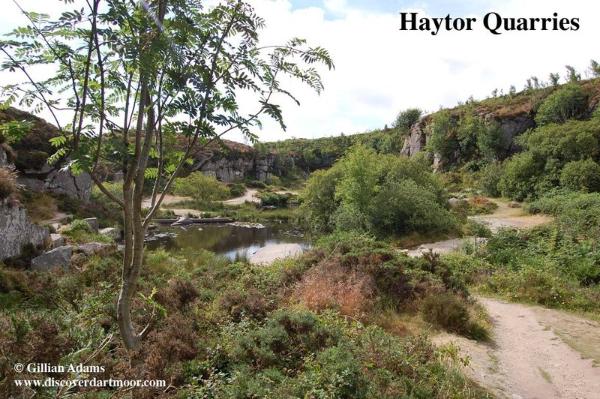 1 haytor quarryUSE