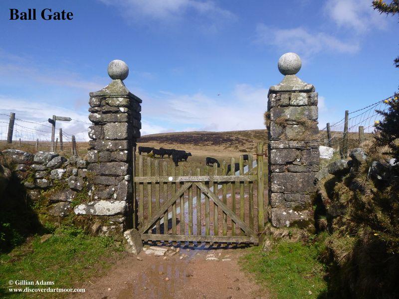 1 ball gate