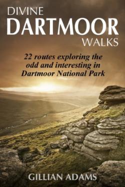 1 Dartmoor coverSMALL
