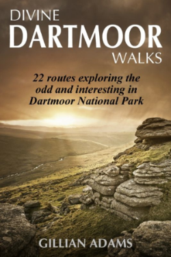1 Dartmoor coverSMALL