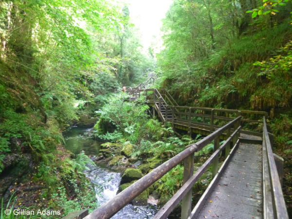 Tunnel falls, Lydford Gorge © Gillian Adams