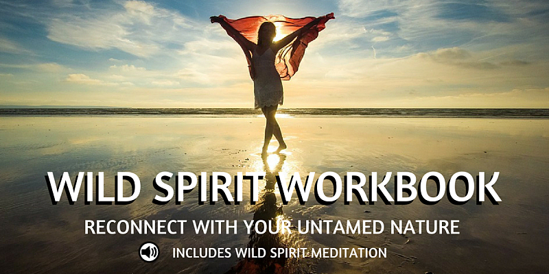 Wild Spirit Workbook and Meditation
