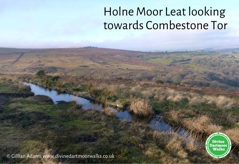 DD Leat and Combestone Tor