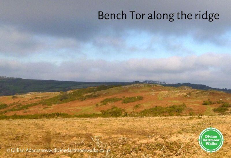 DD Bench Tor ridge