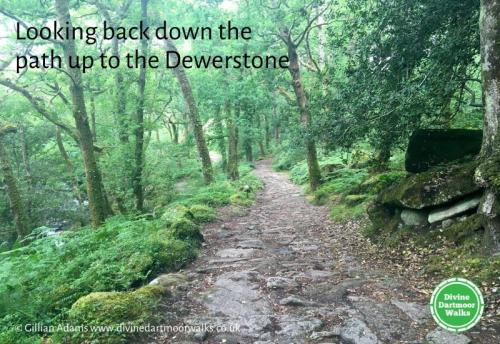 Dewerstone Path © Divine Dartmoor Walks
