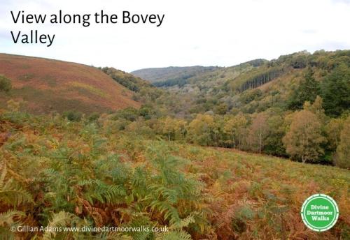 View along the Bovey Valley © Gillian Adams