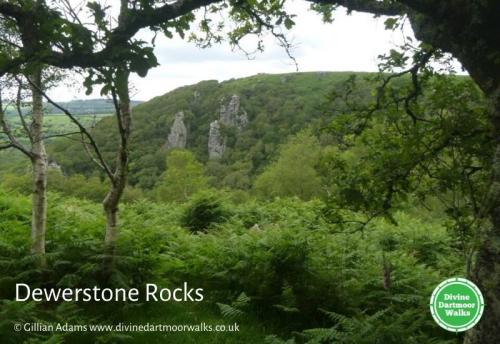 View of Dewerstone  © Divine Dartmoor Walks