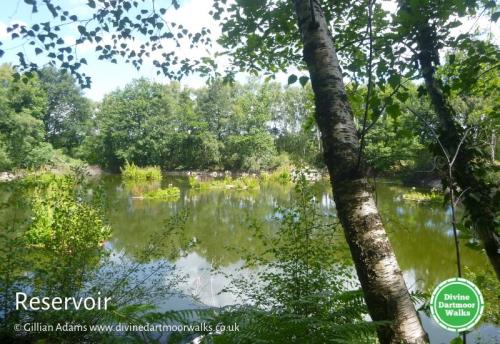 Reservoir in Yarner Woods