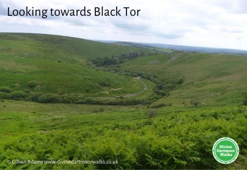 Looking towards Black Tor  © Gillian Adams