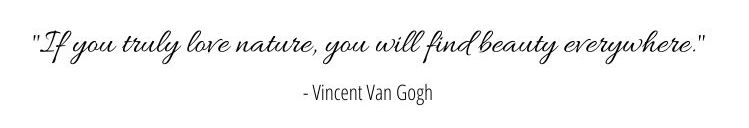 Quote VG